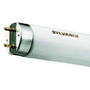 Sylvania F14W T8 840