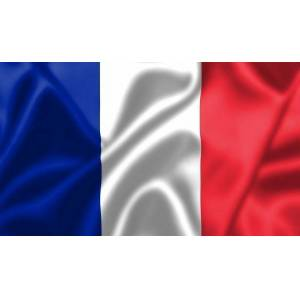 Talamex Flag France 50x75 cm
