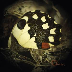 Ossicles Music For Wastelands (Vinyl LP)