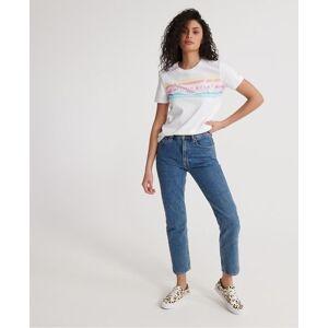 Superdry Premium Logo Rainbow T-Shirt in White (Size: 6)