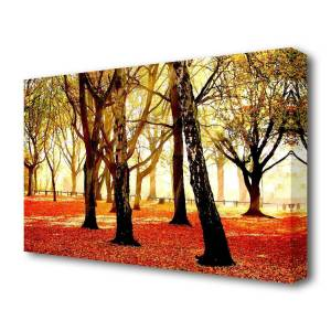 East Urban Home Warm Sunlight Forest Canvas Print Wall Art  - Size: 150.0 H x 80.0 W x 0.7 D cm