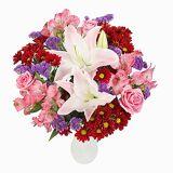 Serenata Flowers Crimson Kiss