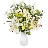 Serenata Flowers White Letterbox Flowers