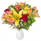Serenata Flowers Orange Letterbox Flowers