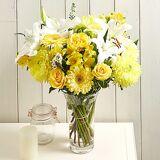 Serenata Flowers Radiant Smile