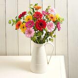 Serenata Flowers Flirty Gerberas