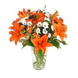 Serenata Flowers Pumpkin Spice