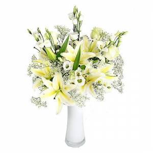 Serenata Flowers Narnian Dreams