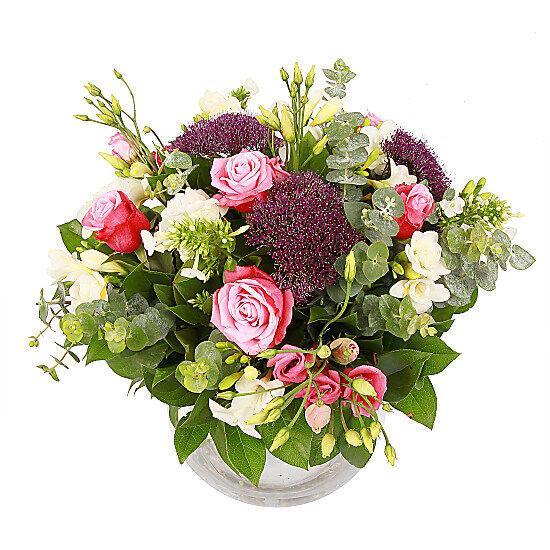 Serenata Flowers Miss Elizabeth Bennett