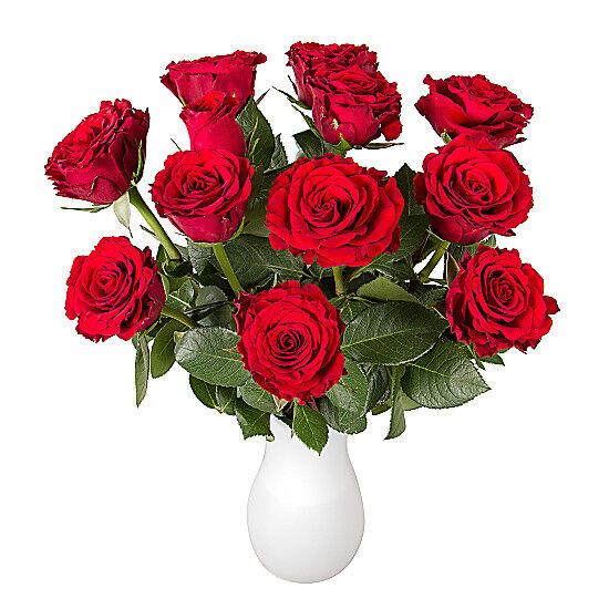 Serenata Flowers Dozen Red Roses in Letterbox