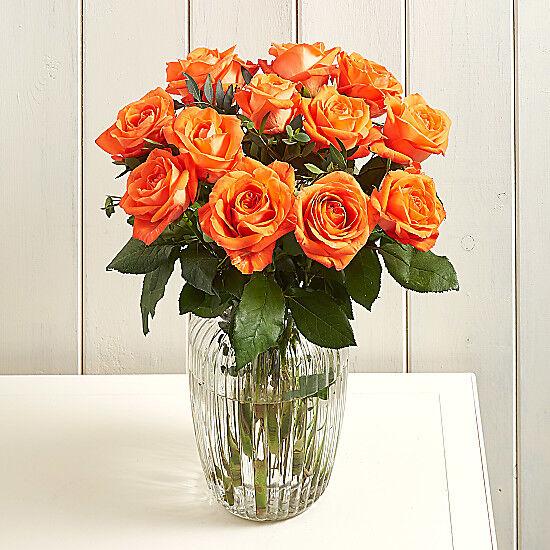 Serenata Flowers Radiant Delight