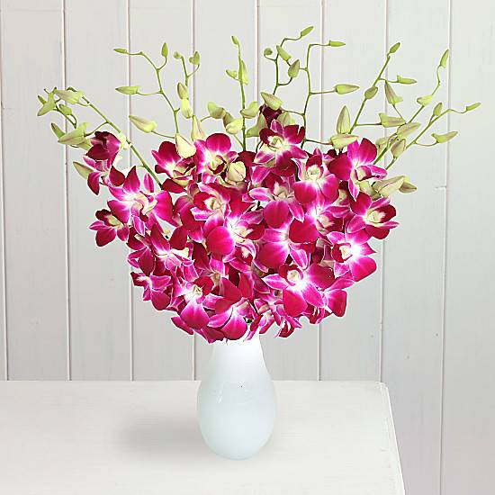 Serenata Flowers Bali Hai: Exotic Pink Orchids Flower Bouquet. Next day flower delivery in the UK.