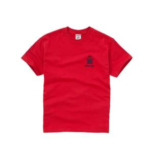 Unbranded Emanuel School Unisex Rodney/Wellington Sports T-Shirt, Red  - Red - Size: Small