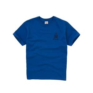 Unbranded Emanuel School Unisex Clyde/Howe Sports T-Shirt, Royal Blue  - Blue - Size: Extra Small