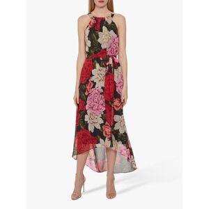 Gina Bacconi Azania Floral Belted Dress, Black/Multi  - Black - Size: 14