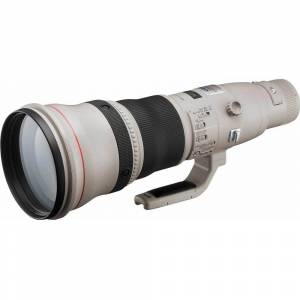 Canon EF 800mm f/5.6L IS USM Super Telephoto Lens