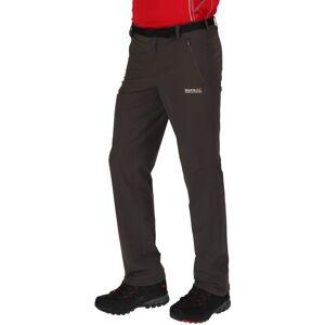 Regatta Size:  54-   Regatta Mens Xert Stretch II Quick Drying Walking Trousers 38R - Waist 38' (97cm), Inside Leg 34' #54