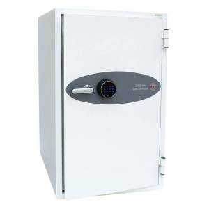 Phoenix Safe Co. DS4621F safe White 143 L Steel