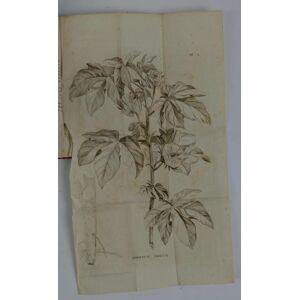 Del Cotoniere e della sua coltivazione… LASTEYRIE DU SAILLANT CHARLES PHILIBERT (Conte) [ ] [Hardcover]