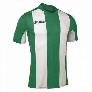 Joma Pisa V S/s XS Green / White