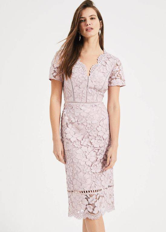 Phase Eight Trinity Corded Lace Dress - Pink - Phase Eight Dresses