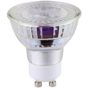 Nordlux LED (monochrome) EEC A+ (A++ - E) GU10 Reflector 5.5 W Warm white (Ø x L) 50 mm x 55 mm dimmable 1 pc(s)