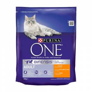 Purina ONE Adult Dry Cat Food With Chicken 800g