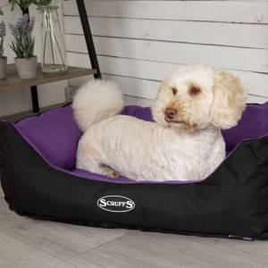 Scruffs Expedition Box Dog Bed Purple - X-Large