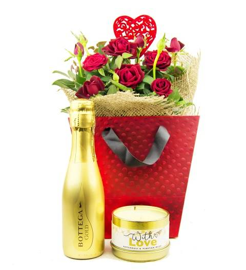 Prestige Hampers Roses and Bubbly - Plant Gifts - Plant Gift Delivery - Indoor Gifts - Rose Plants