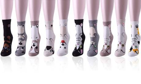 Groupon Goods Global GmbH Five or Ten Pairs of Cat or Dog Full Socks