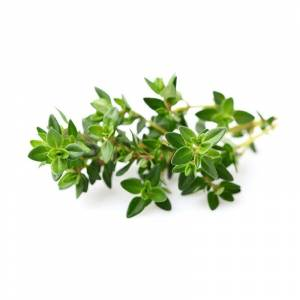 Click & Grow Thyme Plant Pods (3-pack)