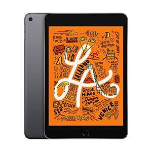Apple 2019 Apple iPadmini (7.9-inch, WiFi, 64GB) - Space Grey (5th Generation)