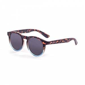 Pam3b #paloalto Sunglasses Paloalto Newport Sunglasses Sun Glasses Unisex Adult Demy, Brown/Blue