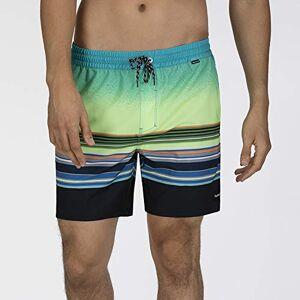 Hurley Men's M Phntm Spectrum Volley 17' Boardshort, Ghost Green, XL