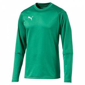 Puma Men's LIGA Training Sweat Sweatshirt, Pepper Green White, Small