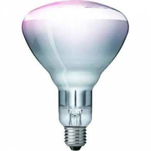 Kerbl Hard Glas Infrared Lamps Philips, 250 W - transparent - A30512