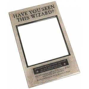 Harry Potter Magnetic Photo Frame, Multi-Colour, One Size
