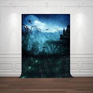 FiVan Backdrops for Halloween Party Pictures,Easy To Hang,Vinyl Plastic Material,Cost-Effective FD6902