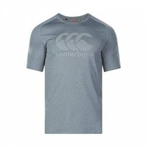 Canterbury Men's Vapodri Large Logo Training T-Shirt, Static Marl, X