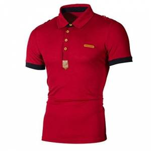 Clothing HARRYSTORE Men's Polo Shirt Casual Slim Short Sleeve Leather Embroidery Polo T Shirt Top (L, Red)