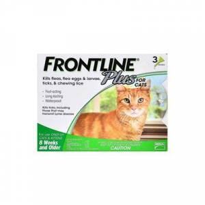 Frontline Plus For Cats 12 Months