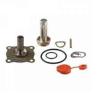 ASCO 302276 Valve Rebuild Kit,With Instructions