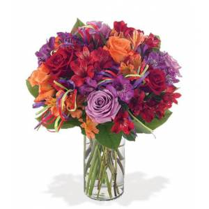 Blooms Today And Many More! Flower Delivery
