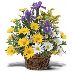 Blooms Today Smiling Floral Basket Flower Delivery