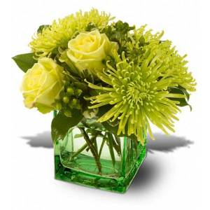 Blooms Today Green Light Flower Delivery