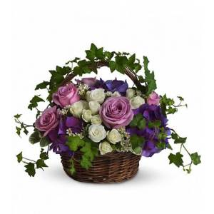 Blooms Today A Full Life Flower Delivery