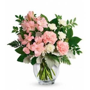 Blooms Today Whisper Soft Flower Delivery