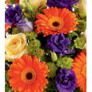 Blooms Today Florist Choice - Multi-Color Flower Delivery