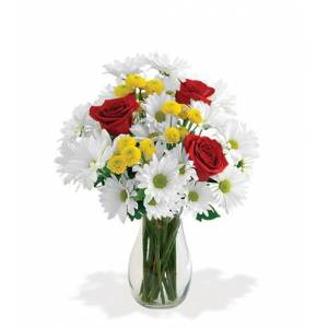 Blooms Today Dash of Daisy Bouquet Flower Delivery