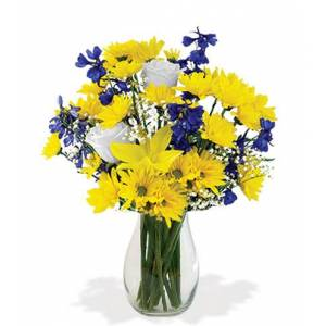 Blooms Today Splash of Sun Bouquet Flower Delivery
